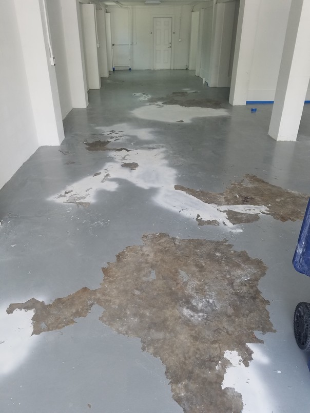 Garage Floor Epoxy At Oak Mill Terrace In Palmetto Fl